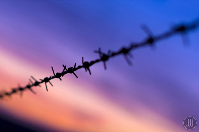Barbed wire2