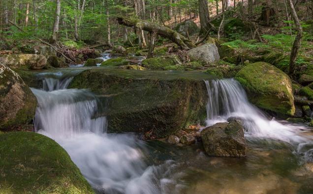 Gentle brook